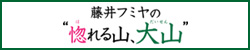 藤井フミヤ特番 再放送
